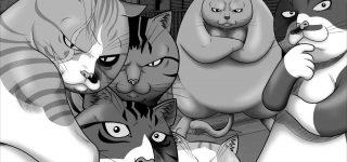 Un coffret intégral pour Street Fighting Cat