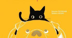 Rady, un chat aux petits soins, s'installe chez nobi nobi !