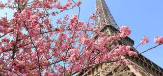 2018 : 160 ans des relations diplomatiques franco-japonaises