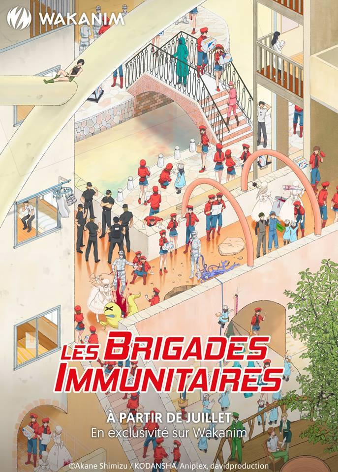 Les Brigades Immunitaires - Anime