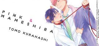 Pink & Mameshiba arrive chez Taifu Comics
