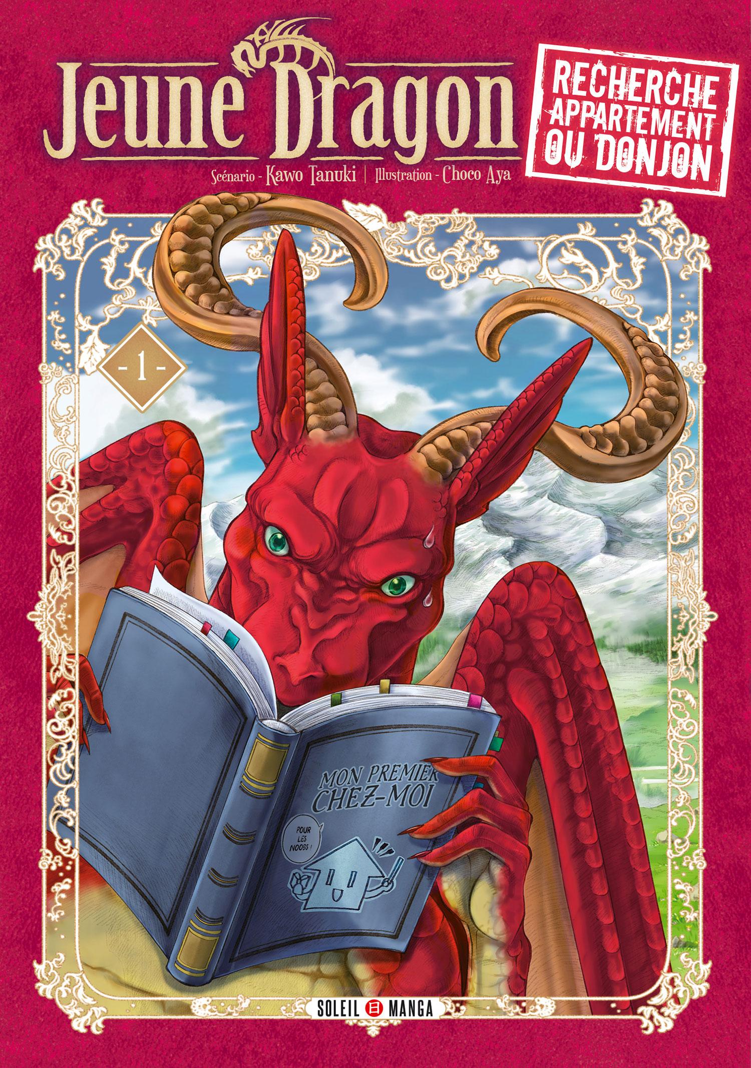 Jeune dragon recherche appartement ou donjon T1