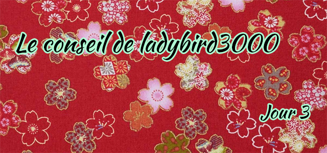 Jour 3 : Le conseil de ladybird3000