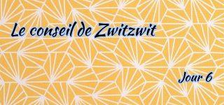 Jour 6 : Le conseil de Zwitzwit