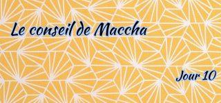 Jour 10 : Le conseil de Maccha