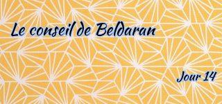 Jour 14 : Le conseil de Beldaran