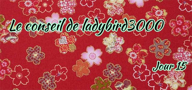 Jour 15 : Le conseil de ladybird3000
