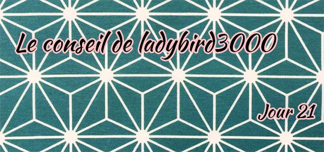 Jour 21 : Le conseil de ladybird3000