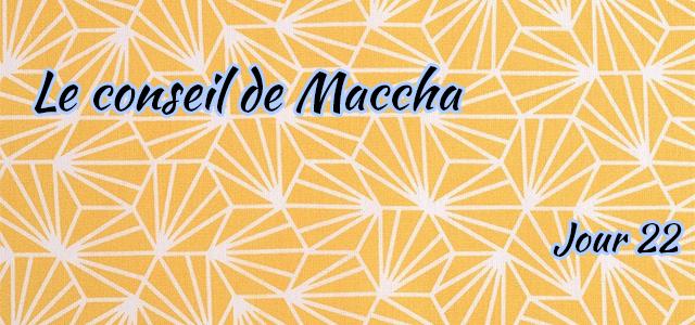 Jour 22 : Le conseil de Maccha