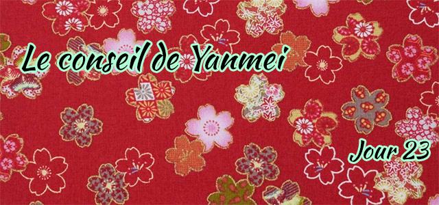 Jour 23 : Le conseil de Yanmei