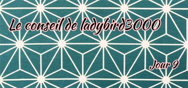Jour 9 : Le conseil de ladybird3000