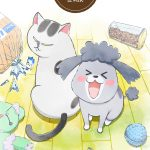 With a Dog AND a Cat, Every Day is Fun - Anime