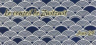 Jour 24 : Le conseil de Zwitzwit