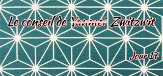 Jour 17 : Le conseil de Zwitzwit