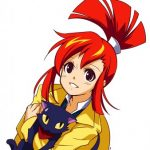 Illustration du profil de shinyaryu